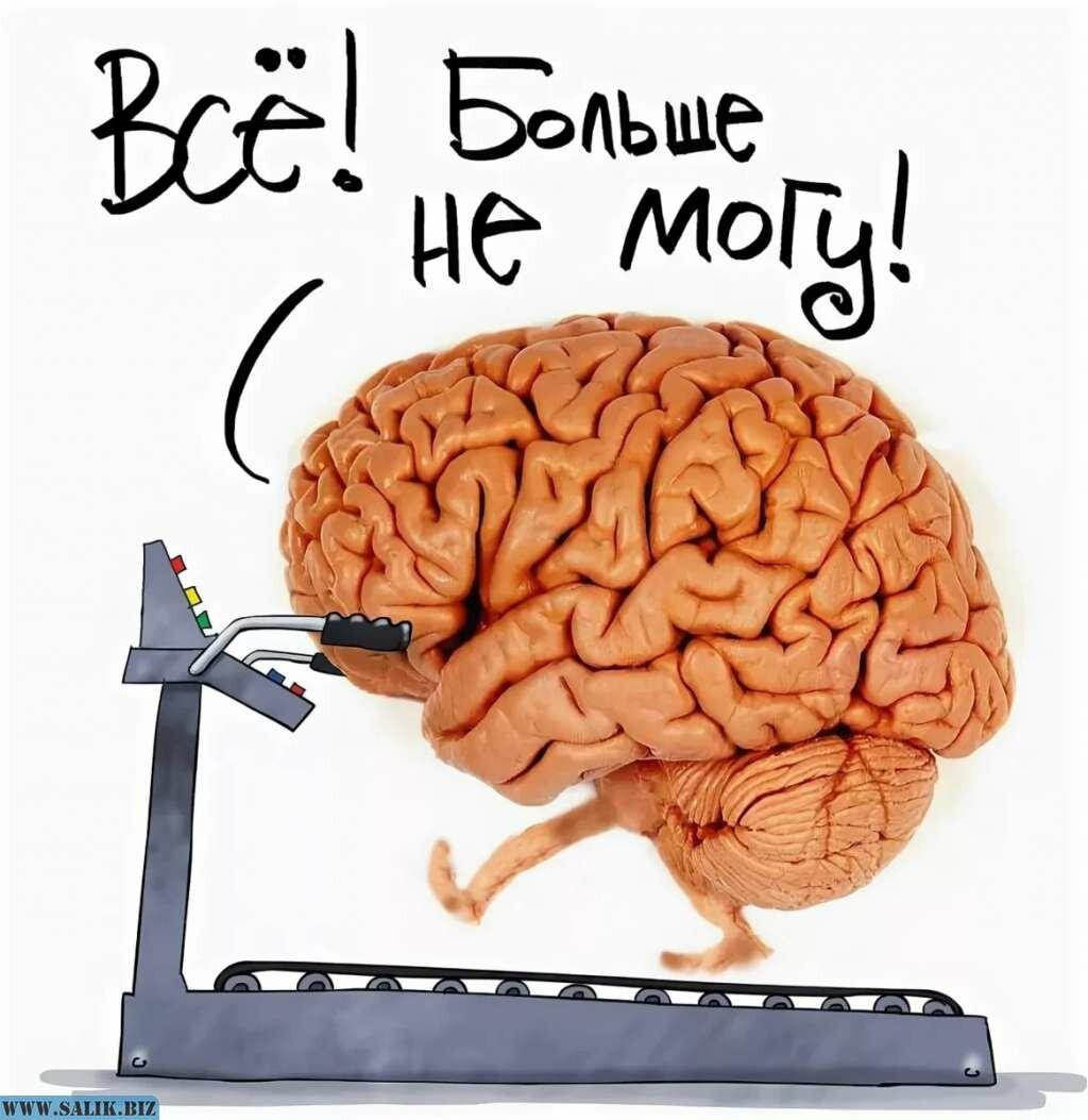 Почему и как мозг работает против человека